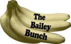 the words The Bailey Bunch superimposed over a bunch of bananas